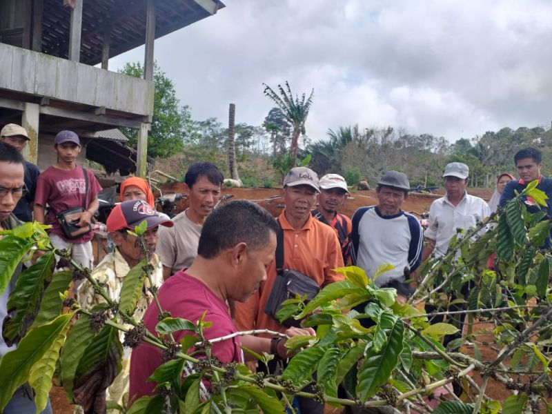 Bank Indonesia Tasikmalaya Dorong Potensi Kopi dan Parawisata Pangandaran