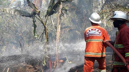Kekeringan Terus Meluas, Permintaan Air Bersih di Pangandaran Meningkat